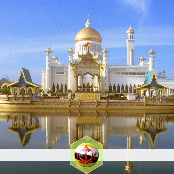AYO Brunei