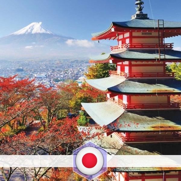 AYO Japan